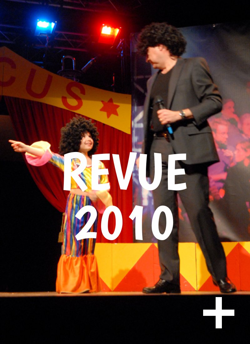 Album photo, revue 2010