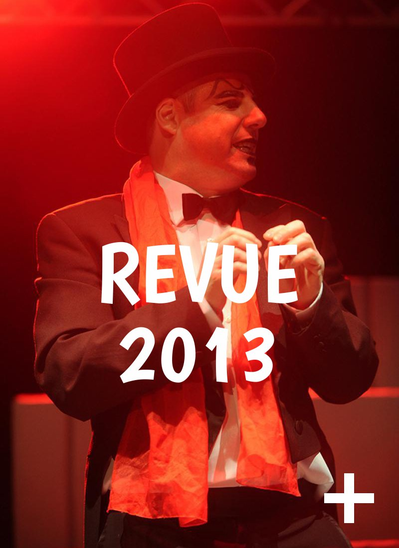Album photo, revue 2013